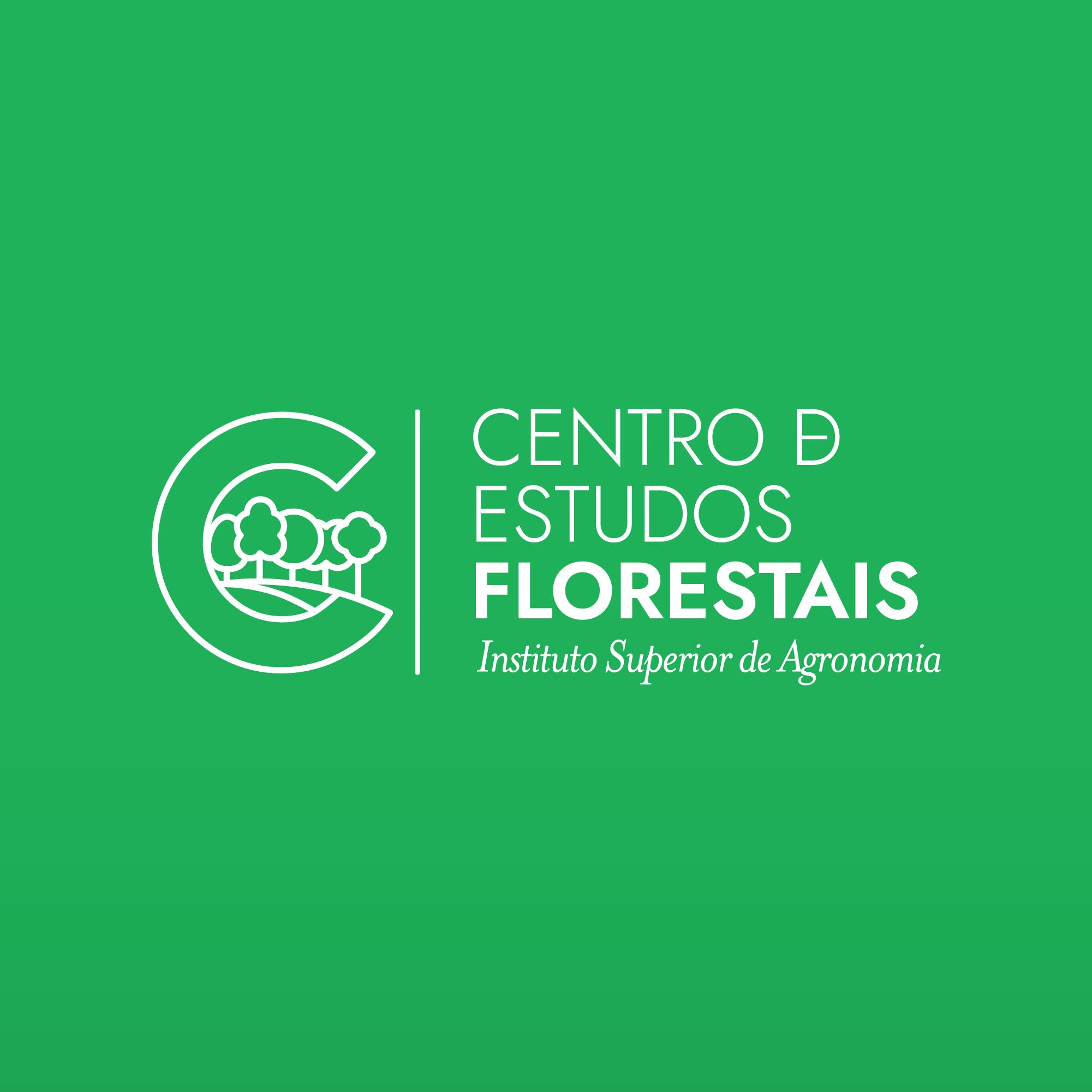 CEF_Portfólio_2
